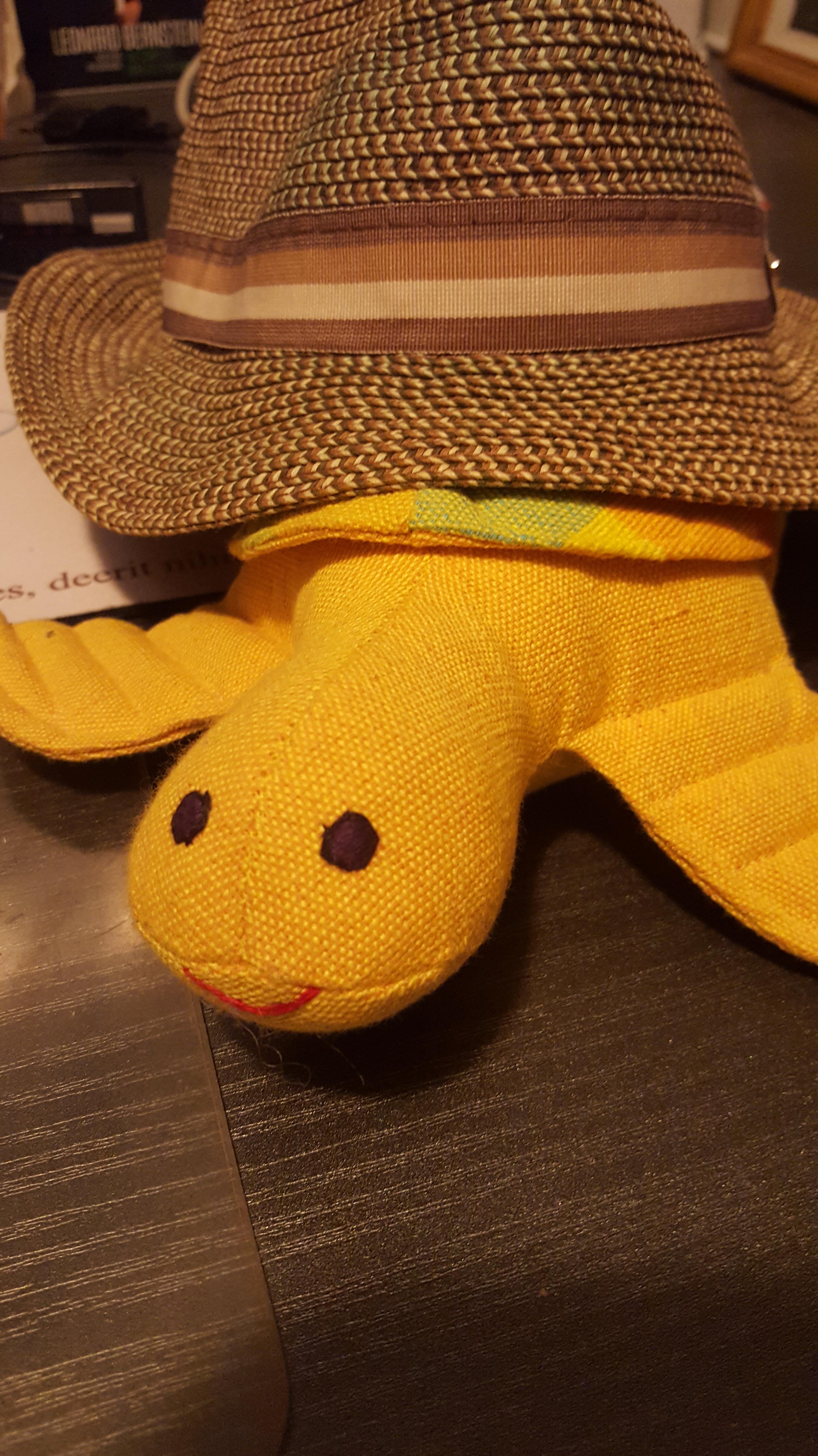 20180729_turtle hat.jpg