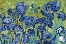 lily 2017-06-05-Van Gogh lilies blu