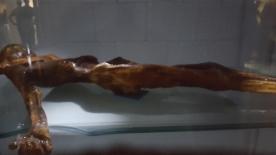 Ötzi the glacier mummy