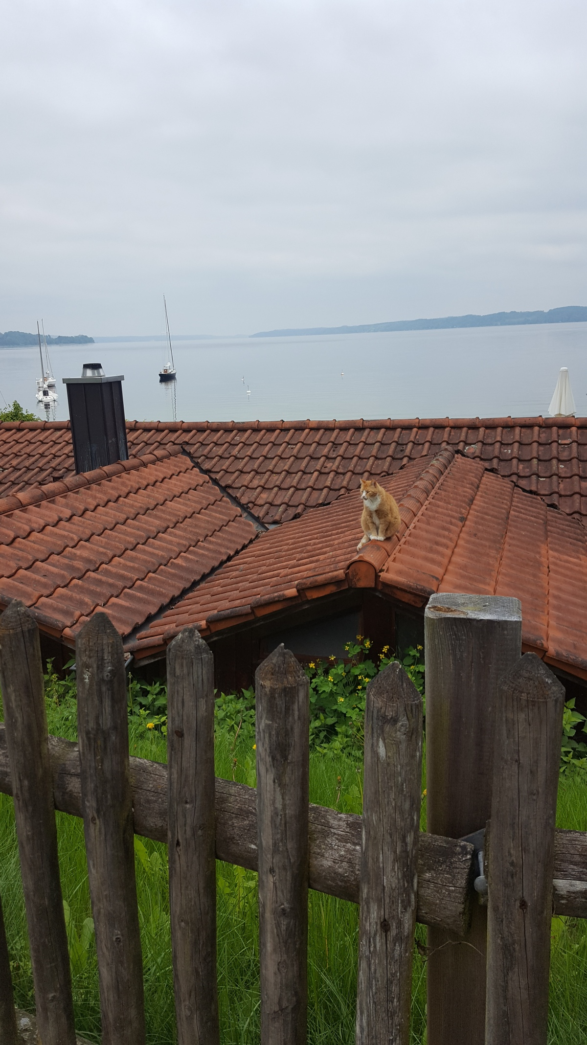 A walk along lake Starnberg : from Tutzing toSeeshaupt